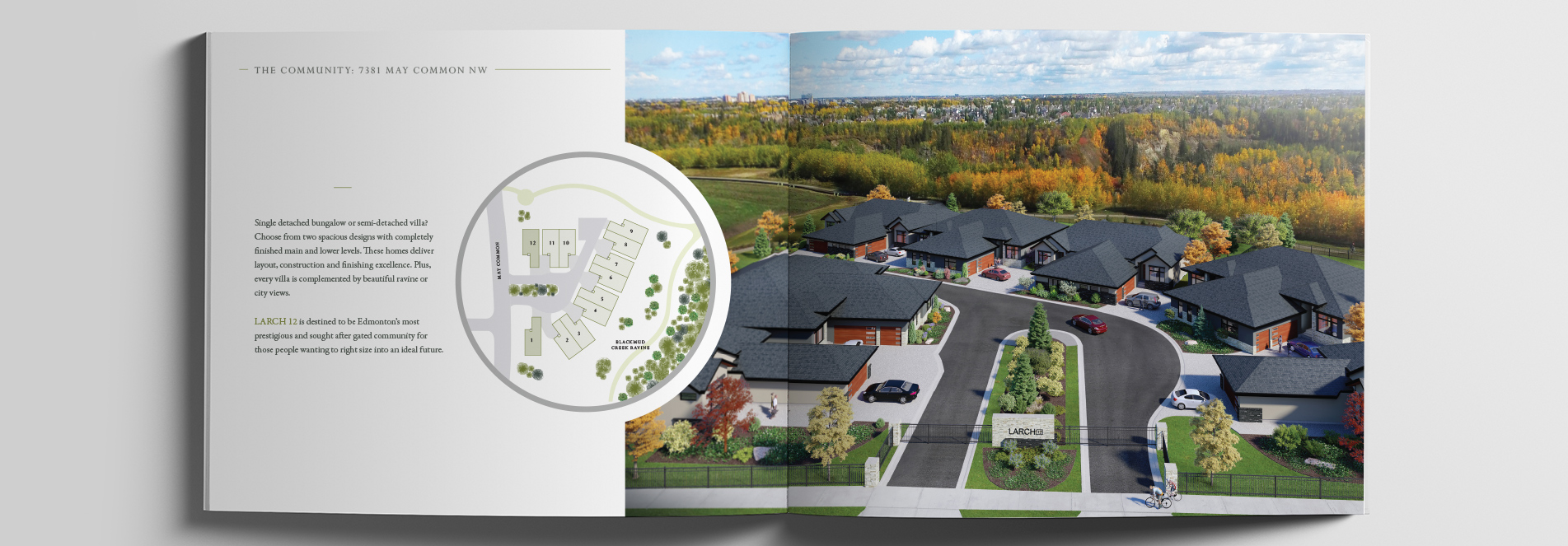 Larch 12 Brochure Project